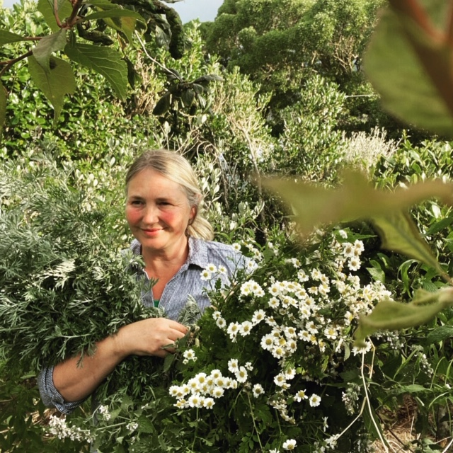 Daisy Wood: Plants by name, plants by nature